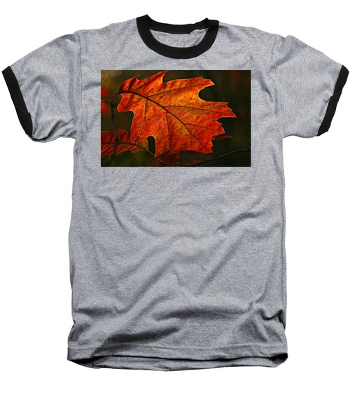 Backlit Leaf Baseball T-Shirt by Shari Jardina
