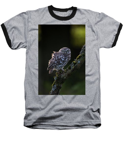Backlit Little Owl Baseball T-Shirt