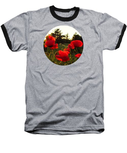 Backlit Red Poppies Baseball T-Shirt by Mary Wolf