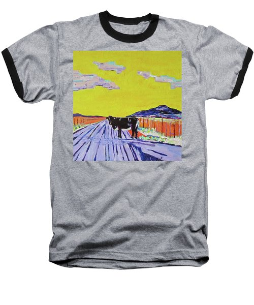 Backroads Abiquiu, New Mexico Baseball T-Shirt by Brenda Pressnall