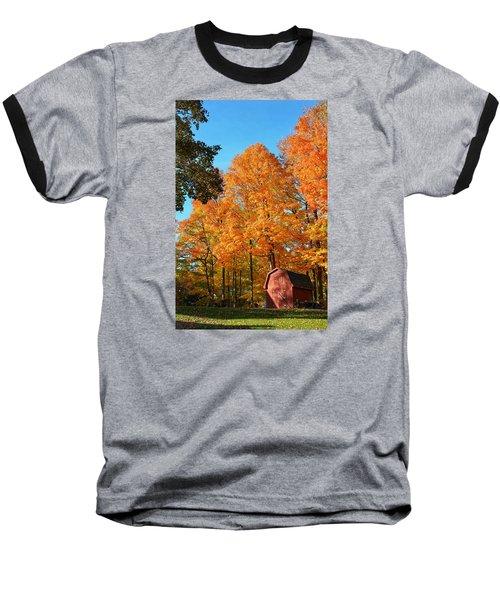 Backyard Beauty Baseball T-Shirt by Nikki McInnes