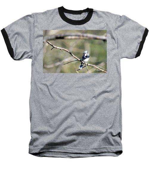 Backyard Blue Jay Baseball T-Shirt