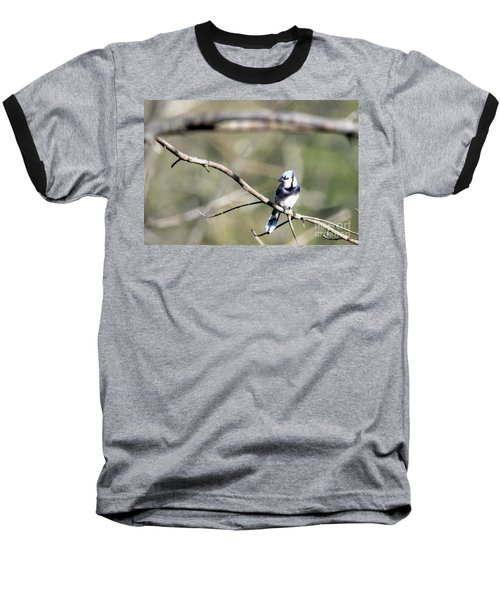Backyard Blue Jay Oil Baseball T-Shirt