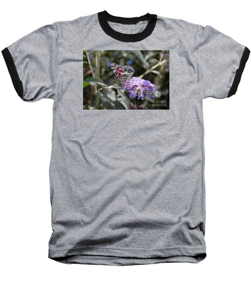 Backyard Buckeye Butterfly Baseball T-Shirt by Debra Thompson