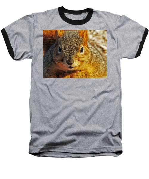 Backyard Squirrel Baseball T-Shirt