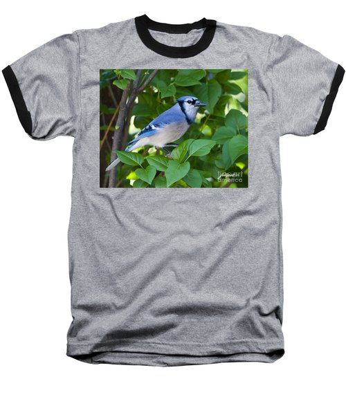 Backyard Visitor Baseball T-Shirt