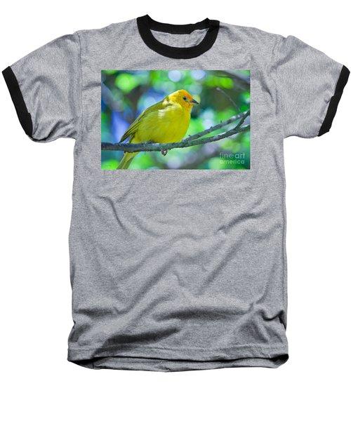 Balance Of Nature Edition 3 Baseball T-Shirt by Judy Kay