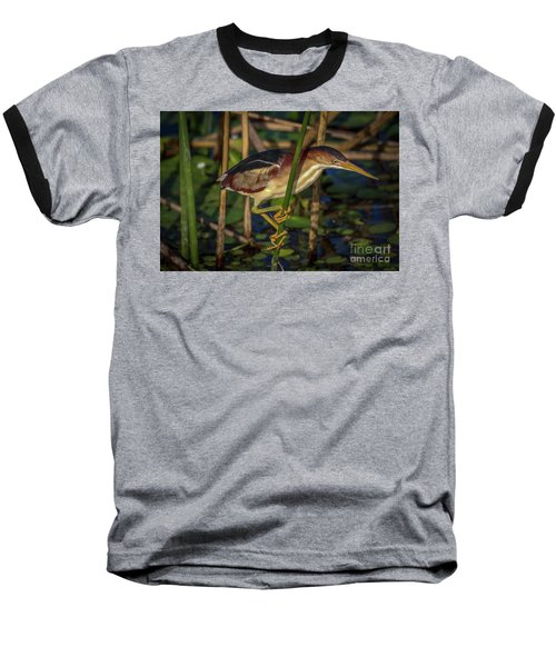 Balanced Perch Bittern Baseball T-Shirt
