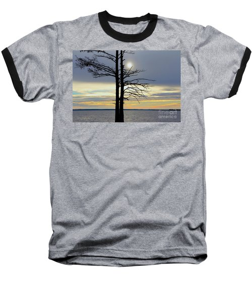 Bald Cypress Silhouette Baseball T-Shirt