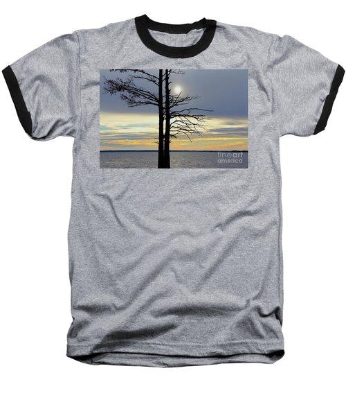 Bald Cypress Silhouette Baseball T-Shirt