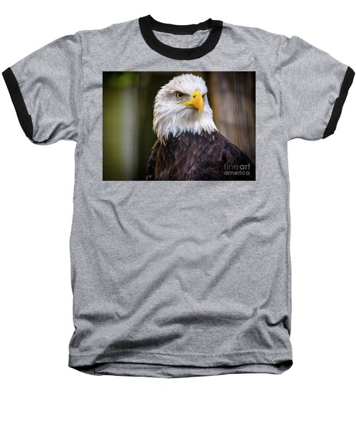 Bald Eagle Baseball T-Shirt by Lisa L Silva