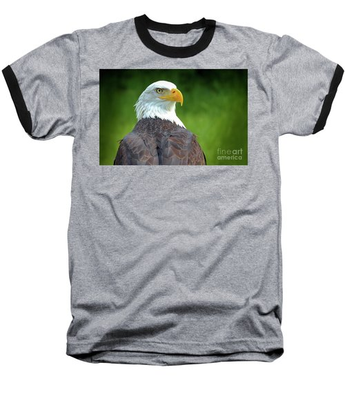 Bald Eagle Baseball T-Shirt by Franziskus Pfleghart