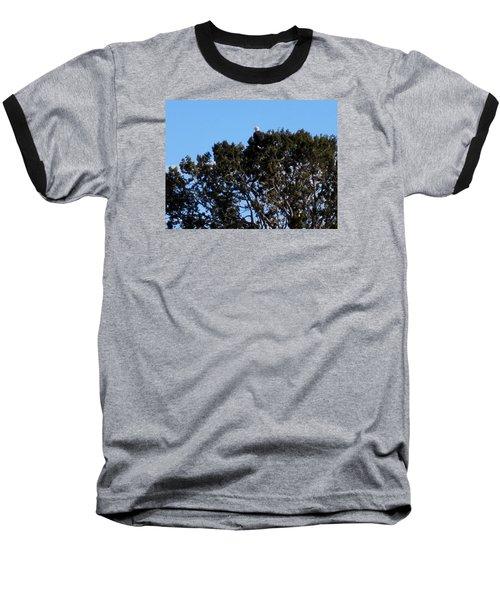 Bald Eagle In Juniper Baseball T-Shirt