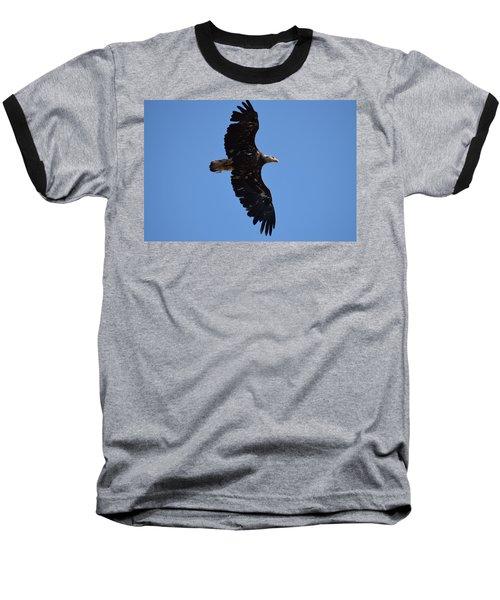 Bald Eagle Juvenile Soaring Baseball T-Shirt
