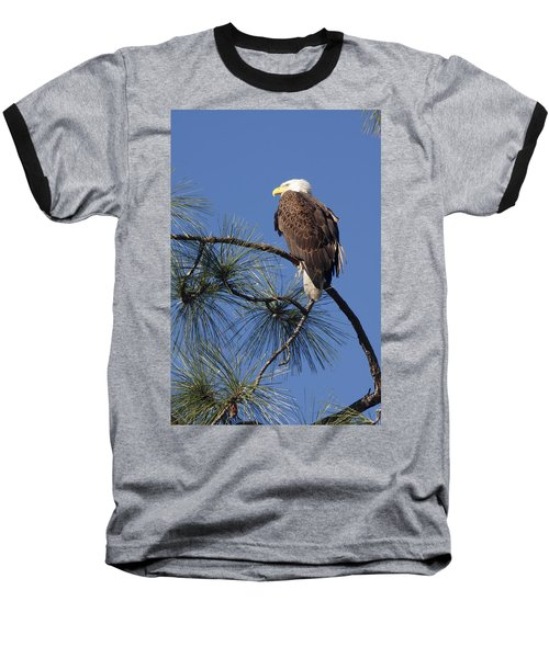 Bald Eagle Baseball T-Shirt by Sally Weigand
