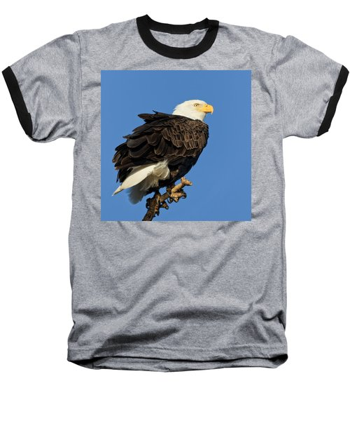 Bald Eagle Squared Baseball T-Shirt