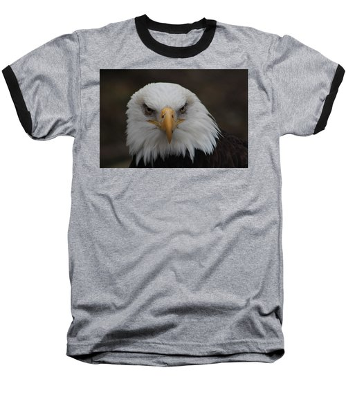 Bald Eagle Stare  Baseball T-Shirt