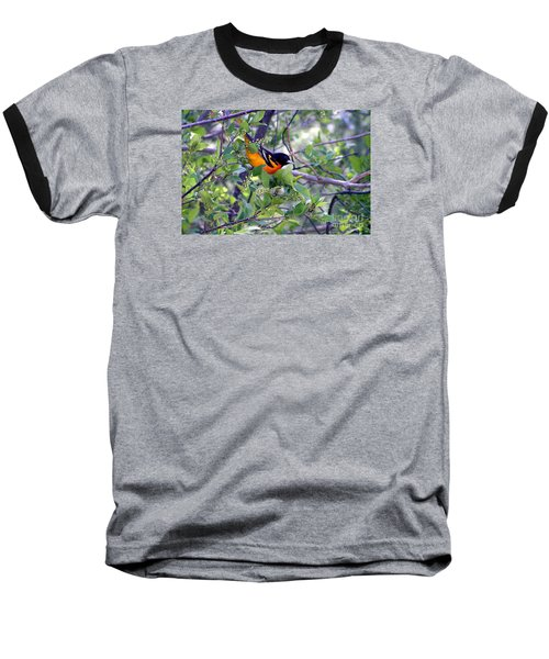 Baltimore Northern Oriole Baseball T-Shirt by Susan  Dimitrakopoulos