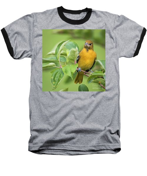 Baltimore Oriole Closeup Baseball T-Shirt