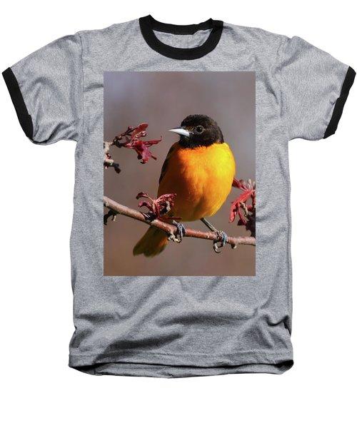 Baltimore Oriole II Baseball T-Shirt