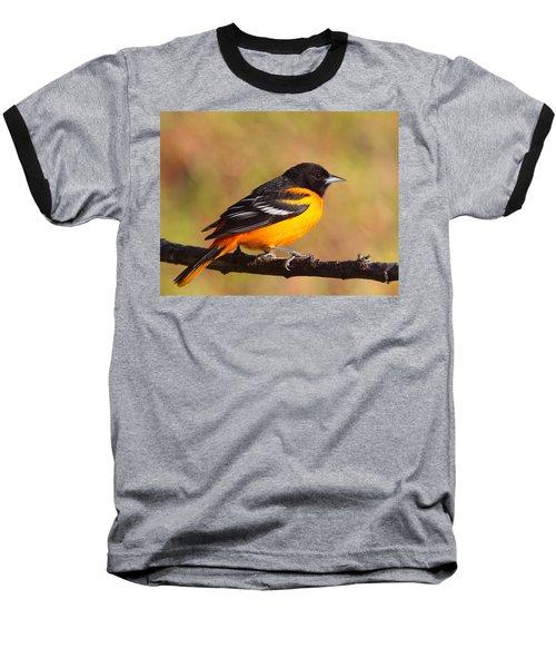 Baltimore Oriole IIi Baseball T-Shirt