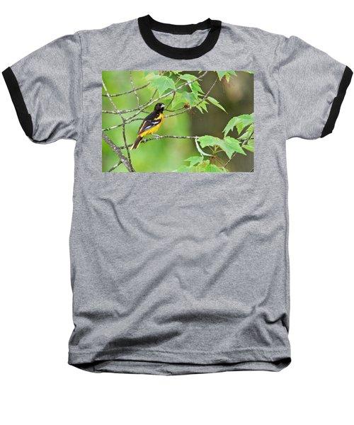 Baltimore Oriole Baseball T-Shirt by Michael Peychich