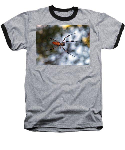 Banana Spider   3 Baseball T-Shirt