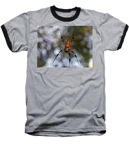 Banana Spider 2 Baseball T-Shirt