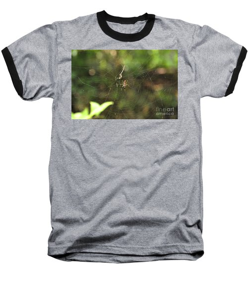 Baseball T-Shirt featuring the photograph Banana Spider In Web by John Black