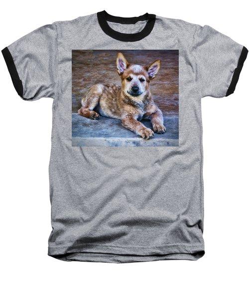 Bandit  Baseball T-Shirt