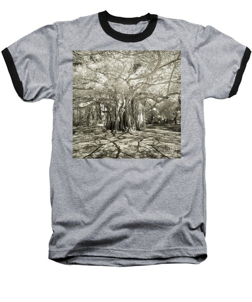 Banyan Strangler Fig Tree Baseball T-Shirt