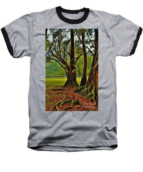 Banyan Tree And Date Palm Baseball T-Shirt