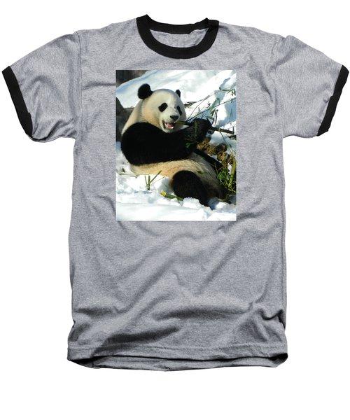 Bao Bao Sittin' In The Snow Taking A Bite Out Of Bamboo2 Baseball T-Shirt