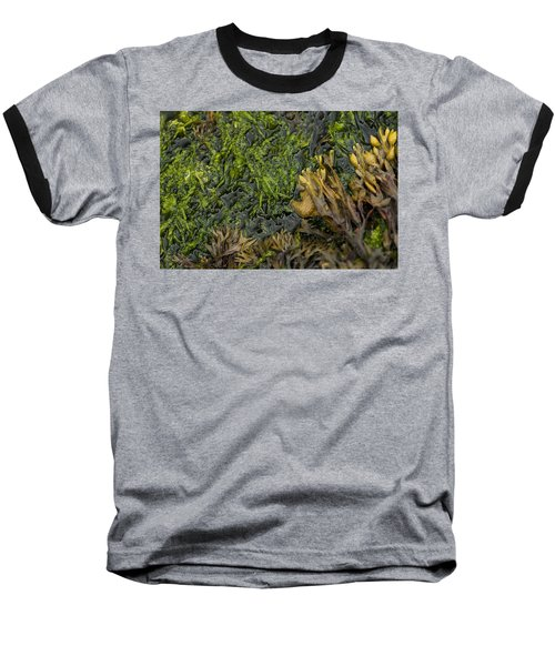 Baseball T-Shirt featuring the photograph Bar Harbor Maine Coastal Life by Kevin Blackburn