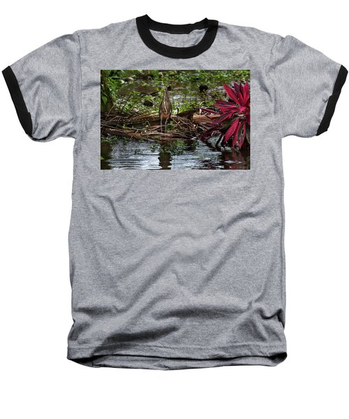 Bare-throated Tiger-heron Baseball T-Shirt by James David Phenicie