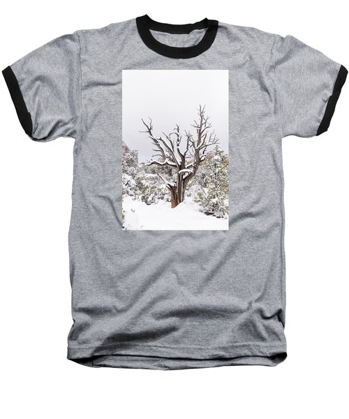 Bark And White Baseball T-Shirt by Laura Pratt