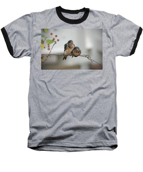 Barn Swallow Fledglings Baseball T-Shirt