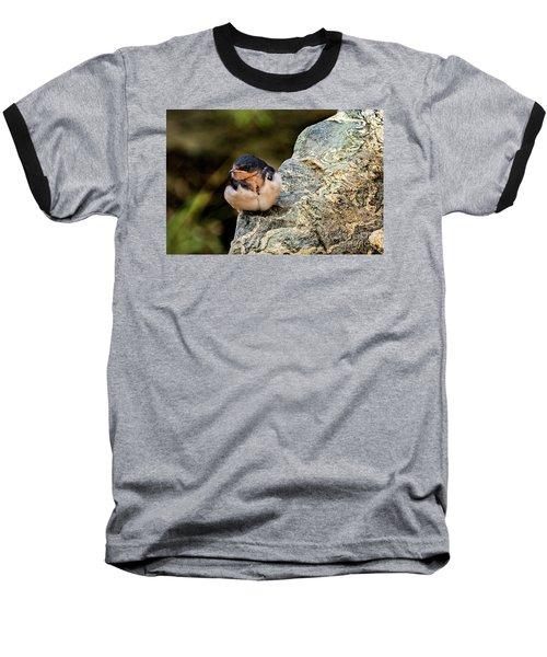 Tree Swallow Baseball T-Shirt
