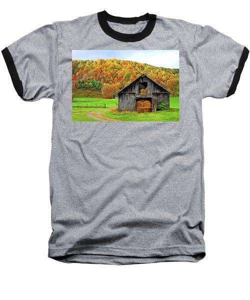 Barntifull Baseball T-Shirt by Dale R Carlson