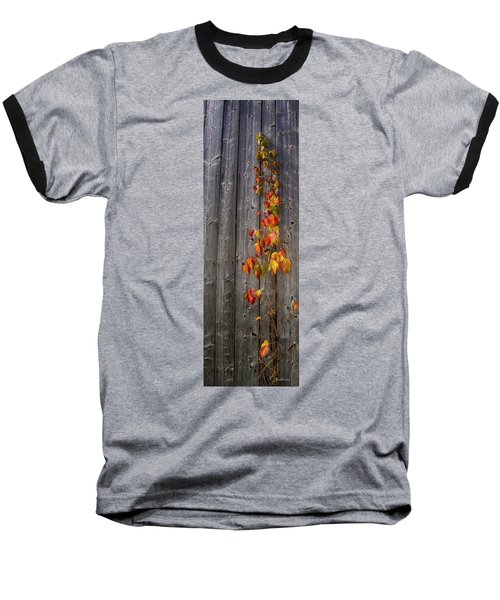 Barnyard Vine Baseball T-Shirt
