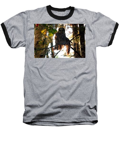 Barred Owl At Sunrise Baseball T-Shirt by Brent L Ander