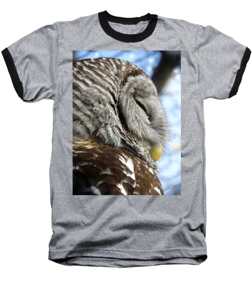 Barred Owl Beauty Baseball T-Shirt by Rebecca Overton