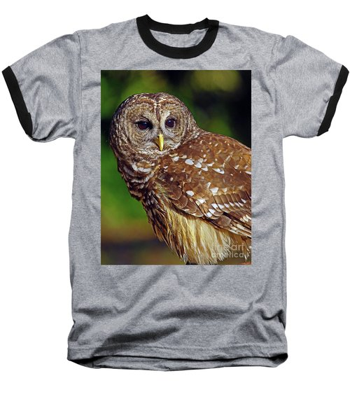 Barred Owl Baseball T-Shirt by Larry Nieland