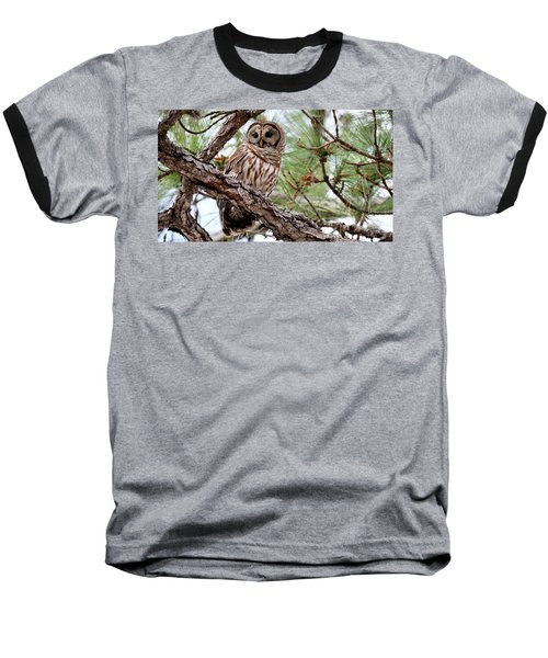Barred Owl On Tree Branch Baseball T-Shirt