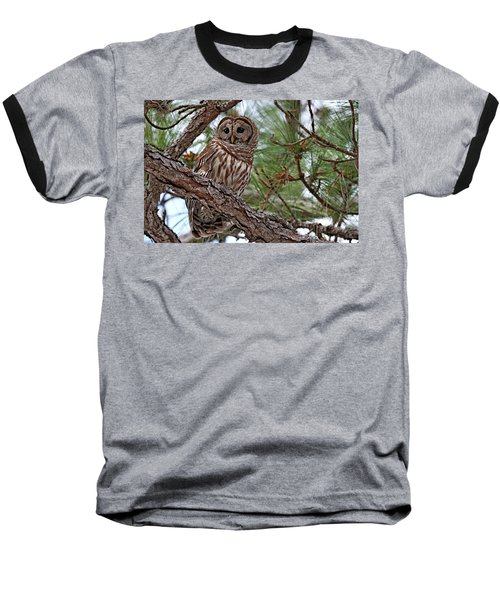 Barred Owl Perched In Tree Baseball T-Shirt