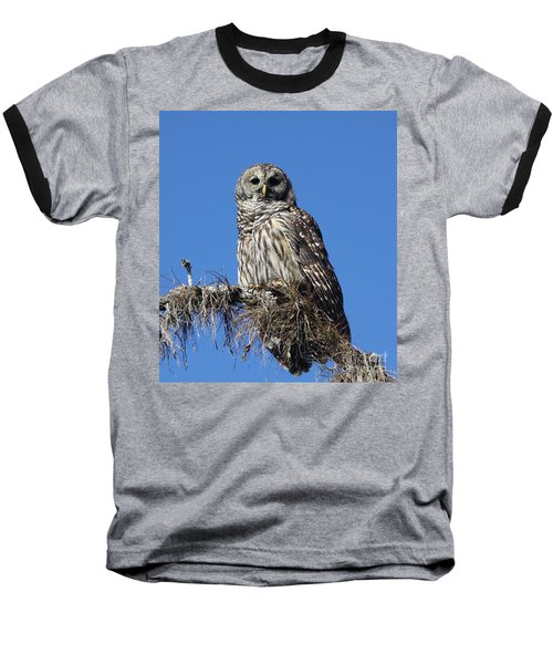 Barred Owl Portrait Baseball T-Shirt
