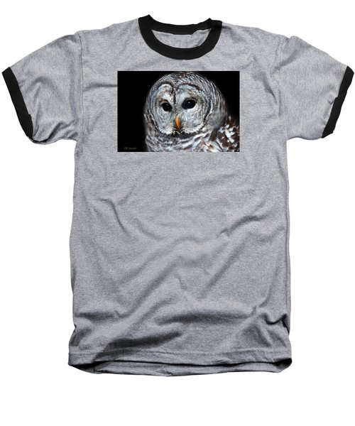 Barred Owl Portrait Baseball T-Shirt by CR  Courson