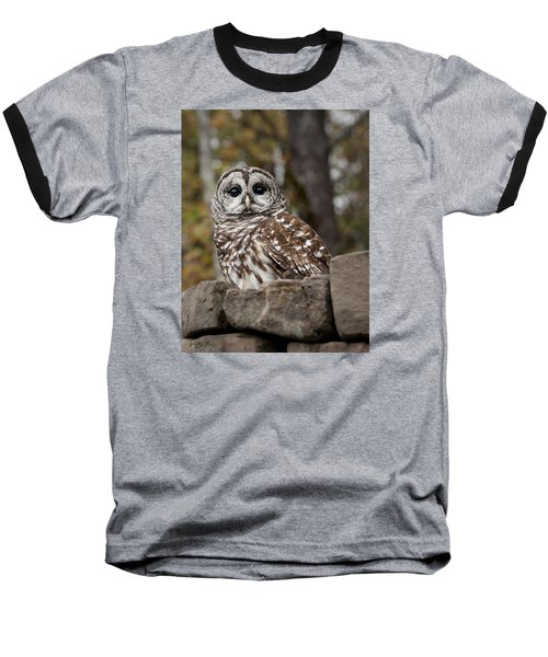 Barred Owl Baseball T-Shirt by Tyson and Kathy Smith