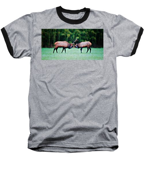 Battling Bulls Baseball T-Shirt
