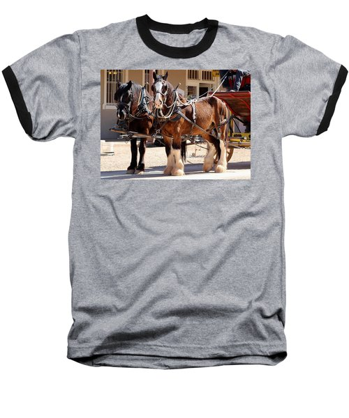 Bay Colored Clydesdale Horses Baseball T-Shirt